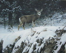 Mule Deer in Snow   - Limited Edition Print  by Robert Bateman