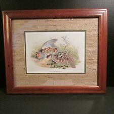 John Gould Framed and Matted Partridge Print