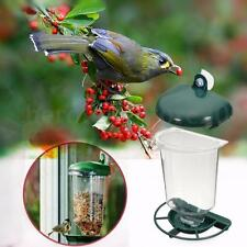Glass Perspex Window Bird Feeder Hanging Suction Cup Clear Viewing Seeds Feed