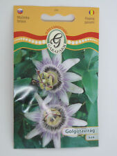 "Passion Flower ""Purple"" Seeds GMO FREE!! Approx. 20 Seeds"