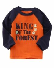 Gymboree S'more Style King Of the Forest Glow Tee Shirt Top Boys 4T NEW NWT