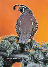 """""""Valley Quail At Sunset"""" California Quail 8""""x10"""" by Realism Artist Roby Baer PSA"""