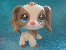100% ORIGINAL Littlest Pet Shop Cocker Spaniel Dog # 2254 Shipping with Polish