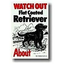 Watch out flat coated retriever de chien-SIGNE