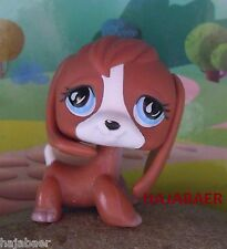 ★ღ Littlest Pet Shop ★ SÜßER HUND BEAGLE DOG CHIEN #567 ★ RAR