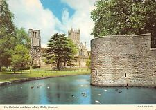B102118 the cathedral and palace moat wells somerset  uk