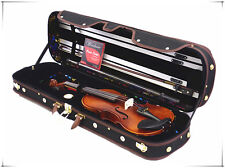 New Student 4/4 Antique Violin+Bow+Limited Wooden Case+Rosin+Extra String Set