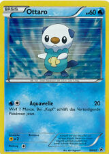 Ottaro 60 KP - BW03 - Blackstar - Pokemon Holo Karte - Tin Box Nr. 21  - Neu