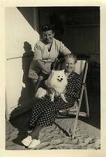 PHOTO ANCIENNE - VINTAGE SNAPSHOT - ANIMAL CHIEN CHAISE - DOG CHAIR