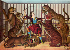 The Lion Queen 1874 Circus Lion Tamer Woman Vintage Poster 12x8 Inch Reprint