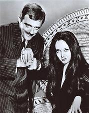 Addams Family Carolyn Jones John Astin 8x10 photo T1379