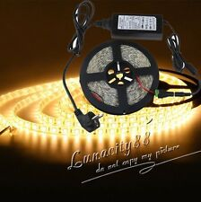 5050 SMD 5M Warm White 300leds LED Flexible Strip Light +Power Supply + FREE DC