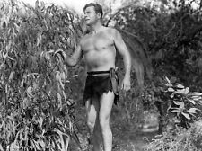 8x10 Print Buster Crabbe King of the Congo 1952 #5502481