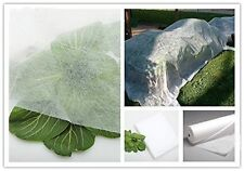 DCP 19- .55oz 10'x5' Lightweight Garden Fabric/Row Cover/Floating Row Crop Cover