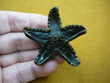Y-STA-710) Brown Tiger's eye STARFISH gemstone sea star FIGURINE carving stars
