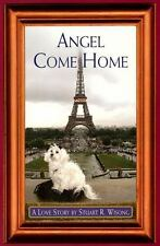 Angel Come Home: A Love Story