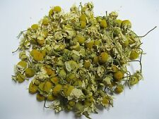 Chamomile Tea Egyptian Whole Flowers 16 oz One Pound Atlantic Spice Company
