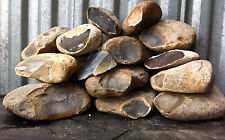 22 Lbs. Texas PRIMO THIN Flint Chert for Knapping Arrowheads