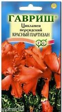 Cyclamen persicum Seeds Red Partisans 3 seeds Цикламен S1173