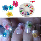 12 Color 3D Nail Art Sticker Dried Flower DIY Sexy Tips Acrylic Decoration Wheel