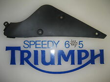 TRIUMPH DAYTONA 675 RIGHT FAIRING INFILL PANEL 2006 - 2012