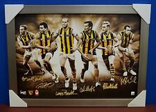 Hawthorn Signed AFL Official Print Silver Frame 2013 Premiers Hodge Franklin