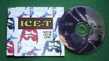 Ice-T Gotta Lotta Love 4 Mixes CD Single