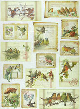 Ricepaper/Decoupage paper,Scrapbooking Sheet Christmas Cards with Birds