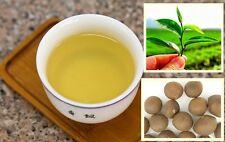 5 Seeds Green Tea Organic Healthy Garden Fresh viable Green Tea Plant seeds