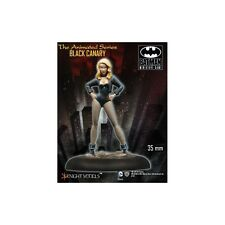 Juego De Batman En Miniatura Canario Negro Series Animadas Knight Models Gratis Reino Unido P&p