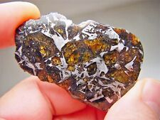 MUSEUM QUALITY! LARGE GORGEOUS CRYSTALS! STABLE! AMAZING ADMIRE METEORITE 28 GMS