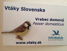 HOUSE SPARROW SOS/Birdlife slovak  Enamel Pin Badge Passer domesticus