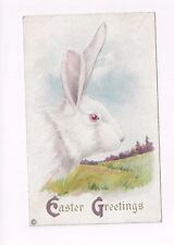 antique db 1921 Stecher Easter Post Card Big White Rabbit