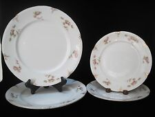 F. WINKLE - Eatonia - PINK ROSES - 2 Dinner Plates and 2 Salad plates