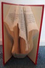 CAT piegato BOOK PATTERN -- LIBRO PIEGHEVOLE MODELLO solo PDF