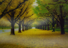 3D Lenticular Poster - Tree Alley with Falling Leaves - 10x14 Print - Scenic