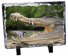 Nile Crocodile, Bird in Mouth Photo Slate Christmas Gift Ornament, AR-C2SL