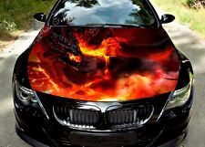 Fire Dragon Full Color Graphics Adhesive Vinyl Sticker Fit any Car Hood #297