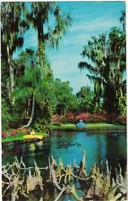 Vintage Postcard - Southern Belles by Water in Cypress Gardens, FL - PM 1961 -VG