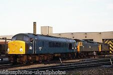 British Rail Class 44 44007 Toton MPD Rail Photo