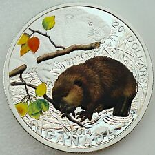 2014 $20 Baby Animals Beaver 1 oz Pure Silver Color Proof 1st Coin in New Series
