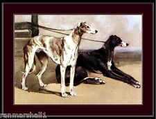 English Print Greyhound Dog Duo Art Picture