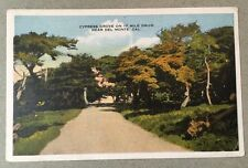 Cypress Grove 17 Mile Dr DEL MONTE CA early unused divided postcard Robert Green
