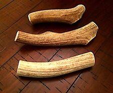 Jumbo Elk Antler Dog Chew-Free Shipping! Amazing Deal!!