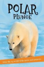 It's all about... Polar Plunge: Everything you want to know about the Arctic and