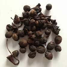 LAUREL BERRY RESIN INCENSE 25g BAG - Amazing Scent - Rapid Same Day Despatch