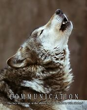 Wolf Wolves Motivational Poster Art Print Classroom Wildlife Made in USA MVP414