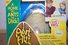 NIB Ant hill living habitat A home that ants can dig
