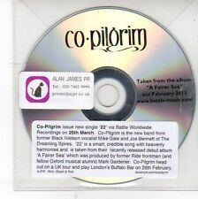 (DV50) Co Pilgrim, 22 - 2013 DJ CD
