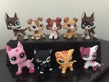 9 Littlest Pet Shop LPS 3-Collie Dogs 3-Great Danes 3-Short Hair Cats USA Seller